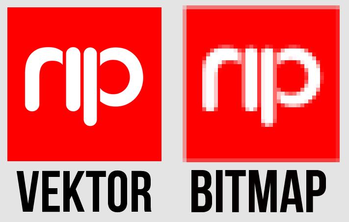 Perbedaan Bitmap Dan Vector Design Is Easy And Fun